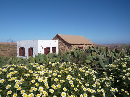 Casa de la Burra - Gîte Rural de Fuerteventura